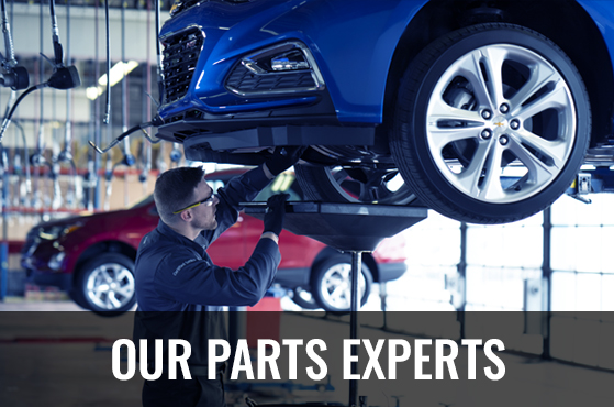 Our Parts Experts